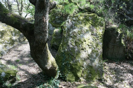 Das ist der Eingang zur Höhle, in der sich Falk und Helena versteckt haben.