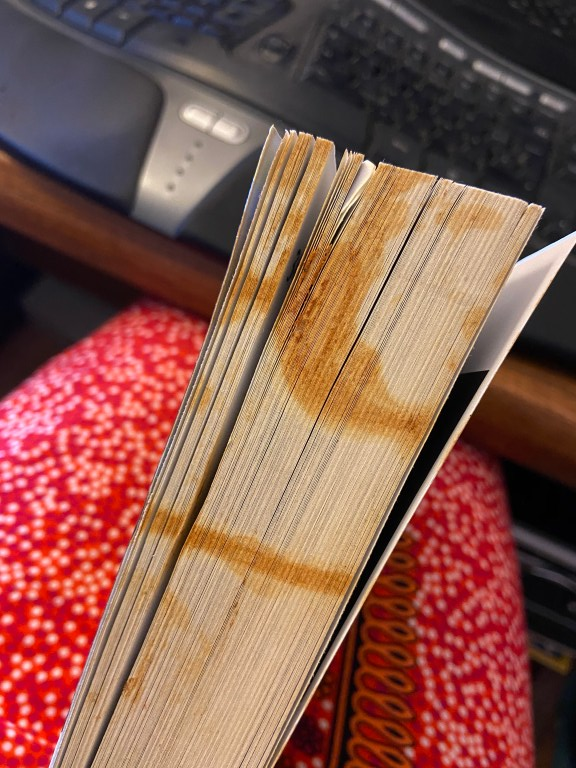 Ansicht der geschlossenen Seiten eines Buchs mit bräunlichen und orangefarbenen Flecken. Im Hintergrund unscharf gepunktete Beine und eine Tastatur.