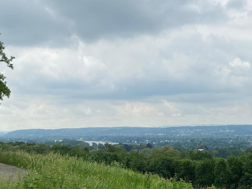 Leicht bewölkter, asugewaschener Himmel. Im Vordergrund ein wenig gekiester Weg (links) und eine verwilderte Wiese an einem abfallenden Abhang. In einiger Entfernung üppig belaubte Bäume hangabwärts, dahinter der Rhein, kaum auszumachen, in der Ferne bewaldete Landschaft mit einzelnen Spuren von Bebauung.