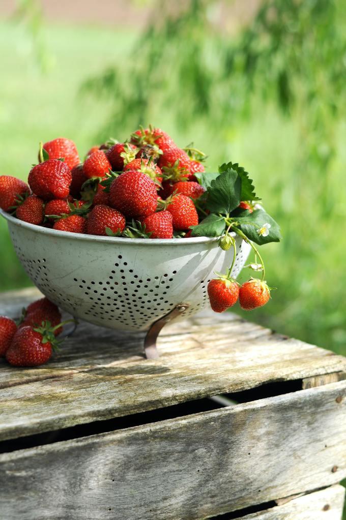 Auf einem verwitterten Holztisch steht ein weißes Sieb, leicht abgenutzt, mit in Sternform angeordneten Löchern. Es ist voll mit frischen Erdbeeren. Im Hintergrund verschwommenes Grün.